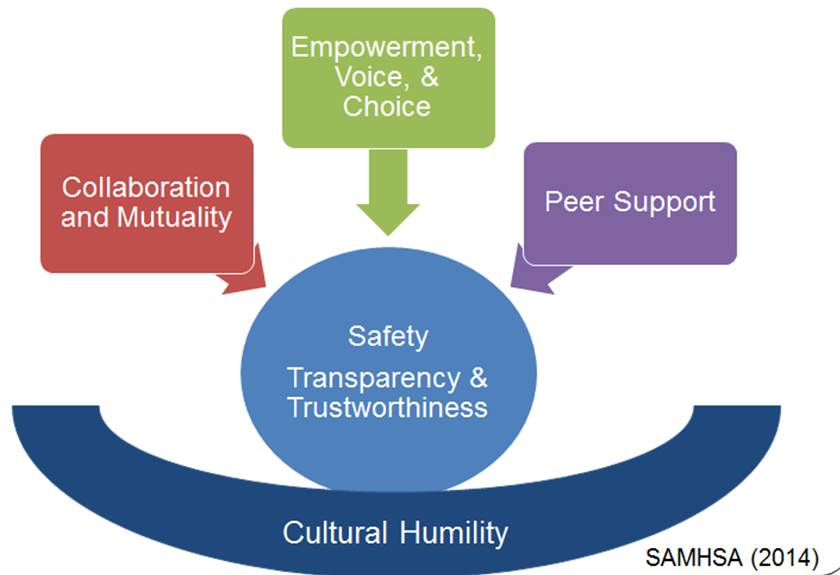The How And Why Of Trauma Informed >> Principles Of Trauma Informed Approach Safe Schools Nola